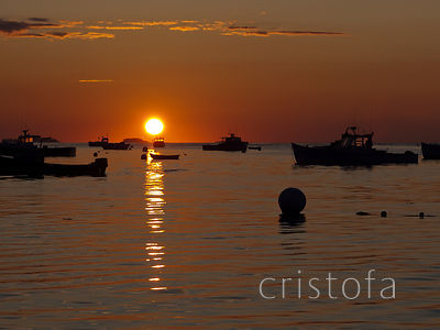lobster boats moored at dawn in Tenants Harbor
