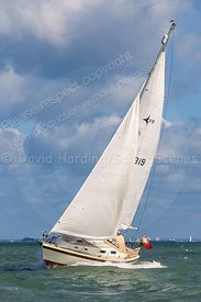 Uptown Girl, FR319, Westerly Fulmar 20150606678