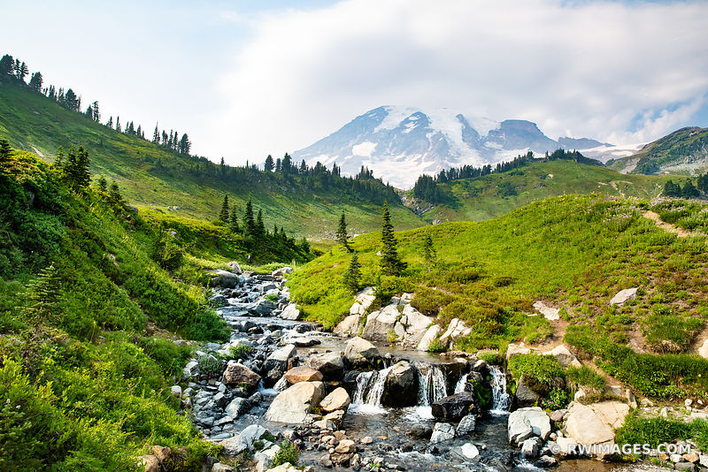 EDITH CREEK ALPINE MEADOW MOUNT RAINIER NATIONAL PARK WASHINGTON COLOR