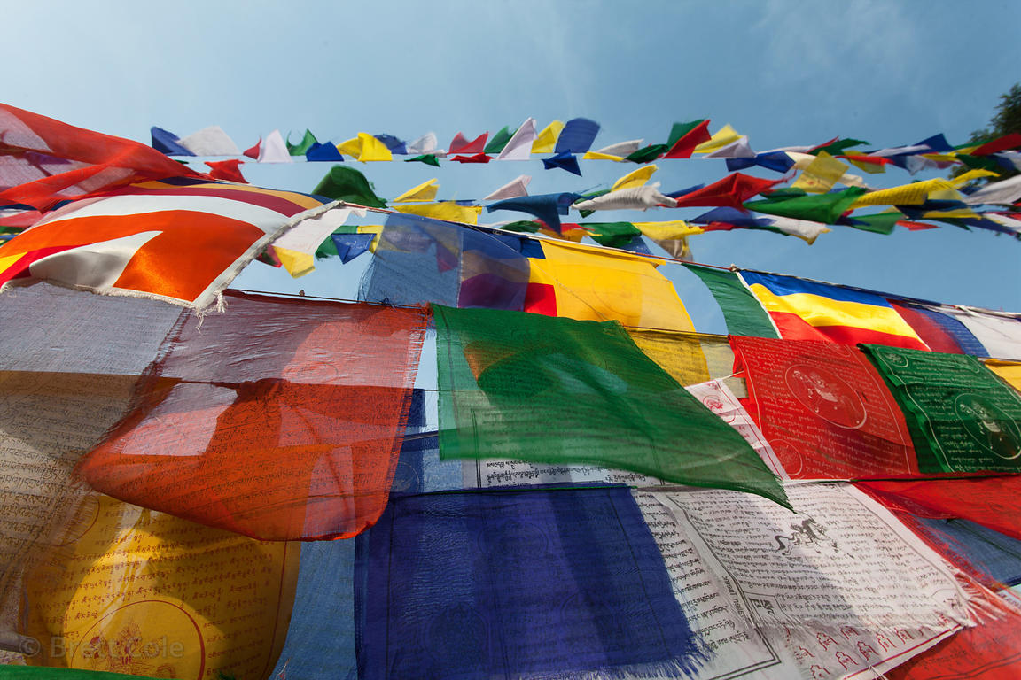 Buddhist prayer flags near Mulagandhakuti Vihara temple, Sarnath, India.