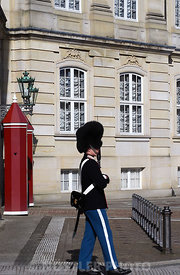 Royal Life Guard at Amalienborg Palace