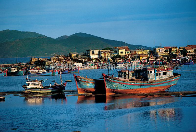 The fishing fleet at Nha Trang harbor.