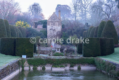 Frozen lily pond in the Canal garden on a winter's morning at Mapperton, Dorset with clipped yews