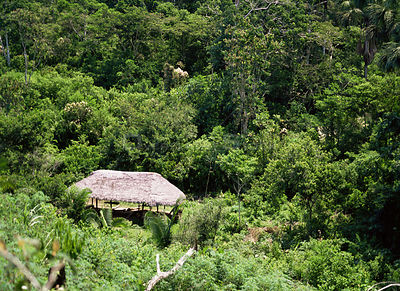 Aerial view of traditional Quechua indian house in rainforest, Sarayaca, Ecuador.