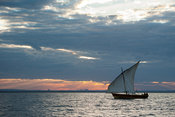 Dhow sailing in Pemba Bay at sunset, Mozambique