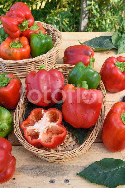 Capsicum annuum 'California Wonder', poivron, rouge