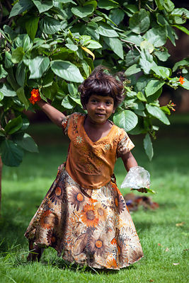 A toddler collects flowers from a tree in a public park near the Gateway to India tourist area in Mumbai, India.