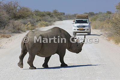 Namibia photos