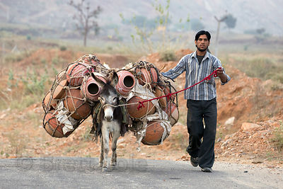 A man and his donkey transport clay water pots down a country road near Kharekhari village, Rajasthan, India