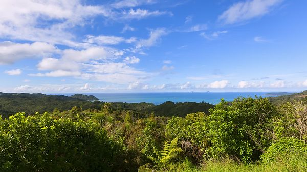 Wide Shot: Beautiful Cloud Spotted Blue Sky Over Rainforest & A Blue Sea
