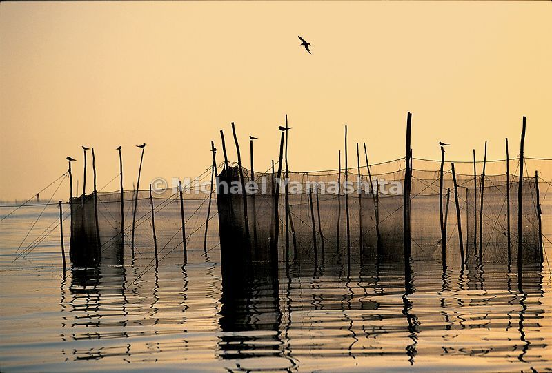 The serenity of fishermen's nets in the Persian Gulf belie the tensions in this strategic area of the world.