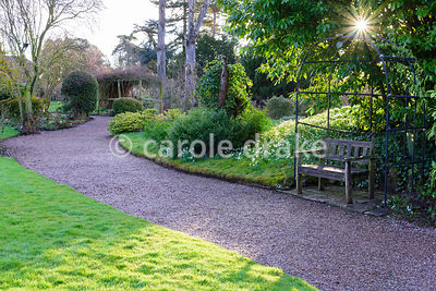Evening sun breaks through foliage above an arbour surrounded by a snowdrop covered bank at Hodsock Priory, Blyth, Notts