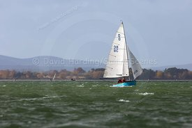 Dolphin 38, Parkstone YC Winter Dinghy Series 2018, 20181111005