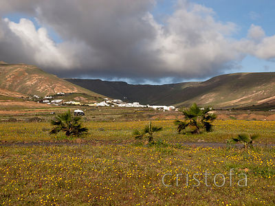 the village of Tabayesco in northern Lanzarote