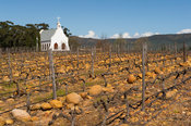 Chapel at vineyards, Tulbagh, South Africa