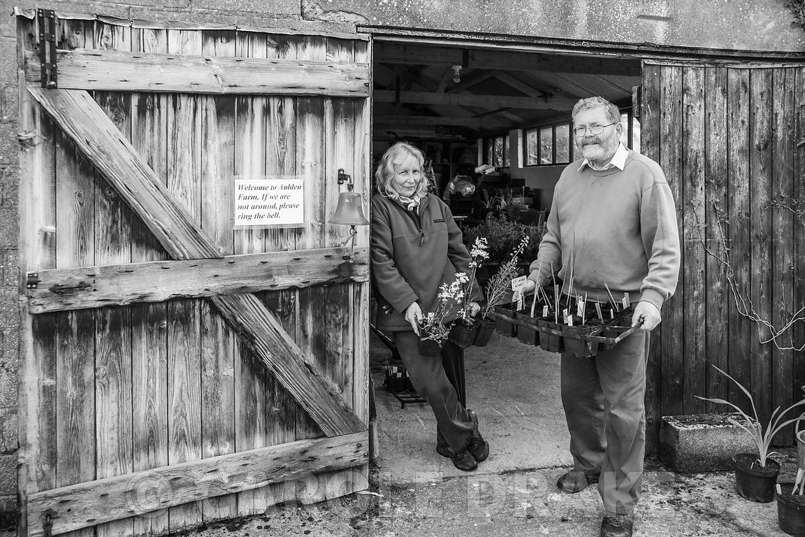 Jill and Alun Whitehead, creators of the garden at Aulden Farm, Leominster, Herefordshire, UK