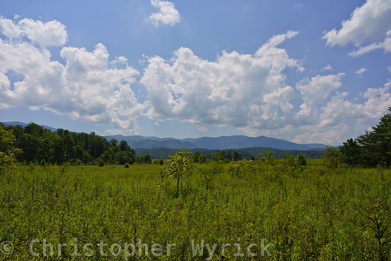 Looking south from Cades Cove near Hyatt Lane toward the main chain of the Appalachian mountains.  Image made on  August 21st...