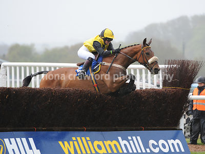 The Independent Racecourses Ltd IRL Hunters' Steeple Chase