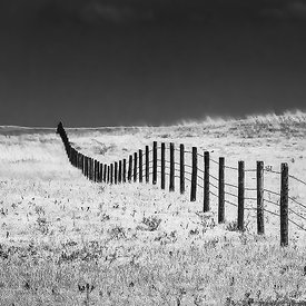 FENCE RUNNING ACROSS THE PRAIRIE