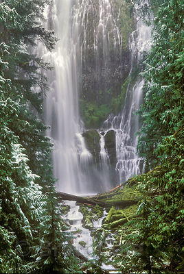 Classic view of Lower Proxy Falls, Three Sisters Wilderness, Oregon Cascades.