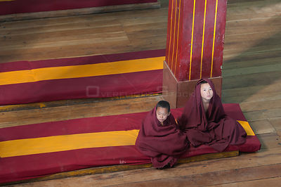 Two  young Buddhist monks after the morning Pudja in the Galdan Namge Lhatse monastery. Tawang, Arunachal Pradesh, India, Feb...