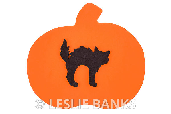 Foam Black Cat on a Pumpkin