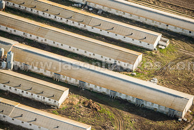 Aerial view of farm buildings, Segovia, Spain