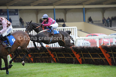 The SIS International Novices' Handicap Hurdle Race