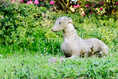 Dog sculpture in the summer garden. Lukesland, Harford, Ivybridge, Devon, UK