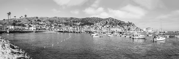 Catalina Island Ultra High High Resolution Black and White Photo