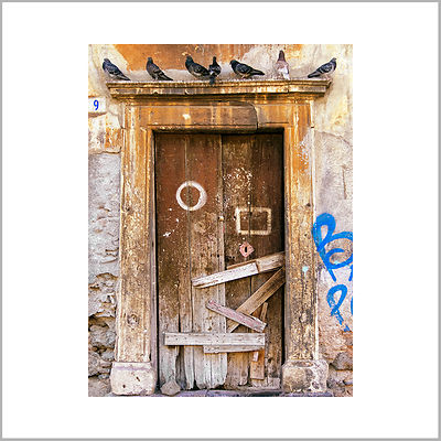 29th October 2017 - Seven Pigeons Above the Door - Catania, Sicily (Italy)