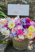 Bucket of flowers for sale at garden entrance. Clovelly Court, Bideford, Devon, UK