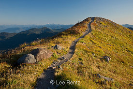 Trail winding along the Railroad Grade lateral moraine created by the Easton Glacier on the slopes of Mt. Baker, Mt. Baker–Sn...