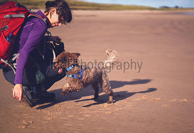 A hiker and their dog playing on a sandy beach, Embleton Bay, NORTHUMBERLAND, England.