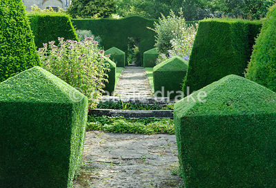 Double herbaceous borders framed with clipped box and tall yew hedges include delphiniums, phlox, campanulas and poppies, wit...
