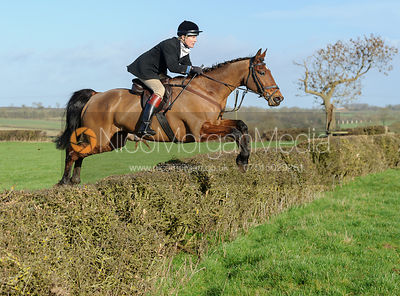 James Henderson jumping a hedge at Mrs Greenall's covert