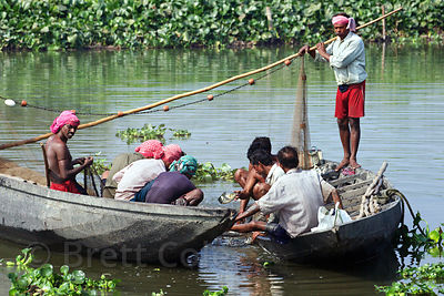 Fishermen haul in nets in the East Kolkata Wetlands, Kolkata, India.