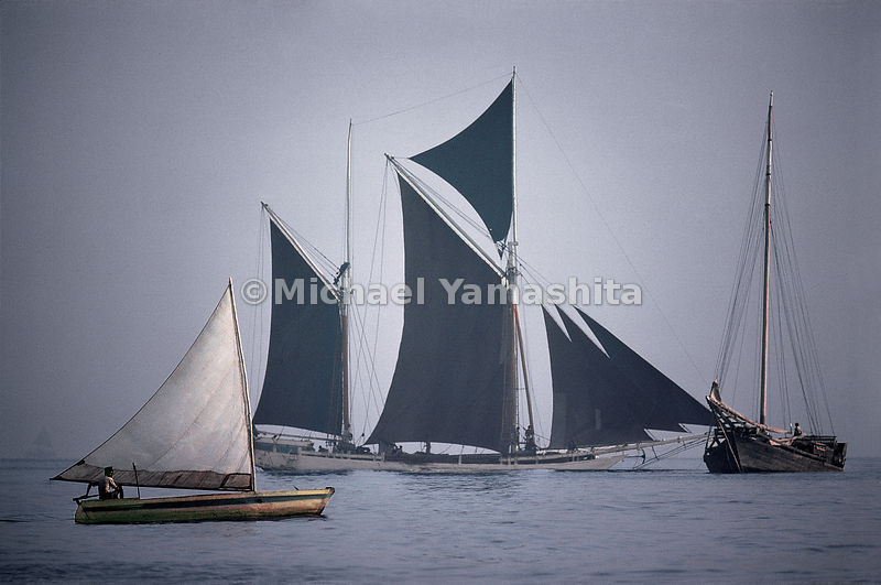 A bugis schooner under full sail in the South China Sea Indonesia is home to the last great sailing fleet in the world.