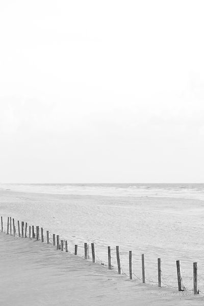 WEATHERED BEACH FENCE ASSATEAGUE NATIONAL SEASHORE MARYLAND BLACK AND WHITE VERTICAL
