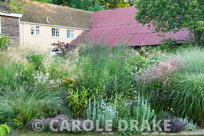 Central circular bed planted with a mix of grasses and herbaceous perennials including Verbena macdougalii, Cirsium tuberosum...