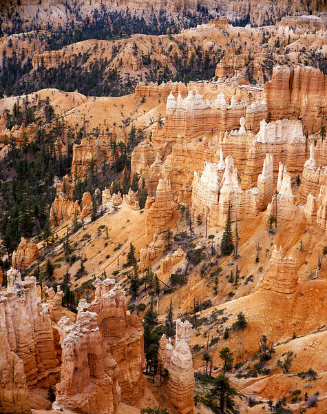 007-Southwest_D095021_Bryce_Canyon_TWL_-_Preview
