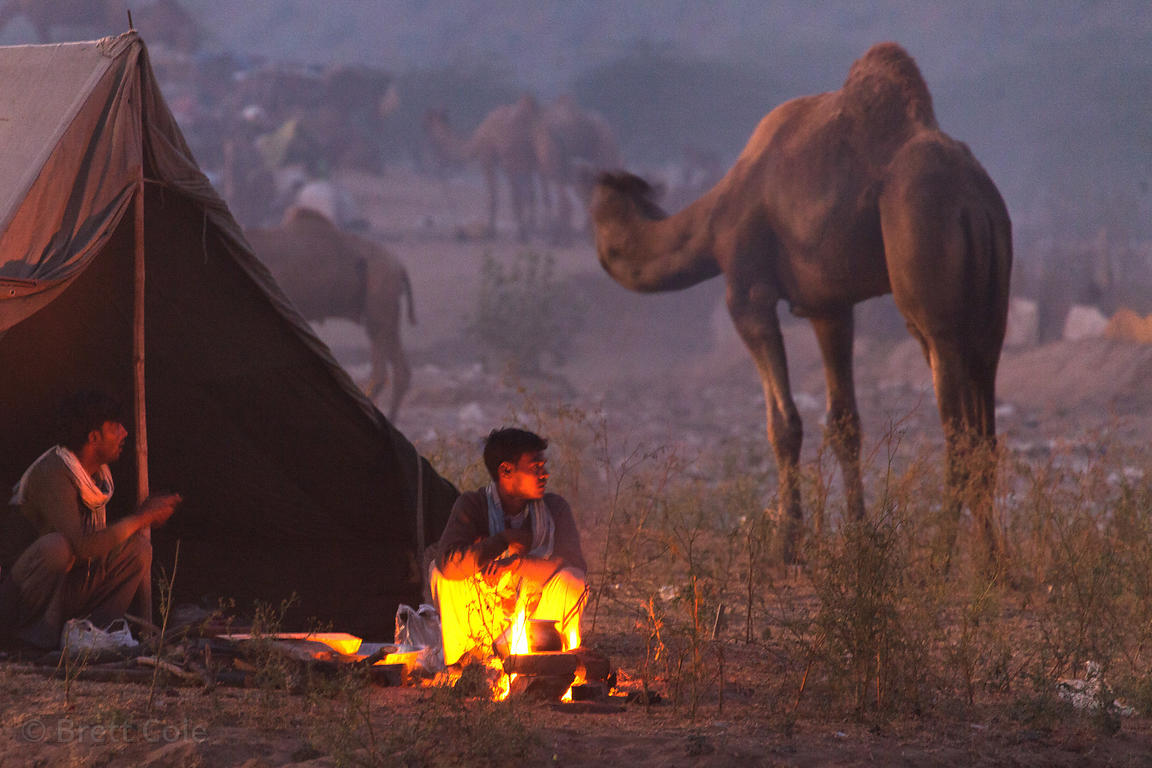 A fire illuminates a campsite at the Pushkar Camel Mela, Pushkar, India.