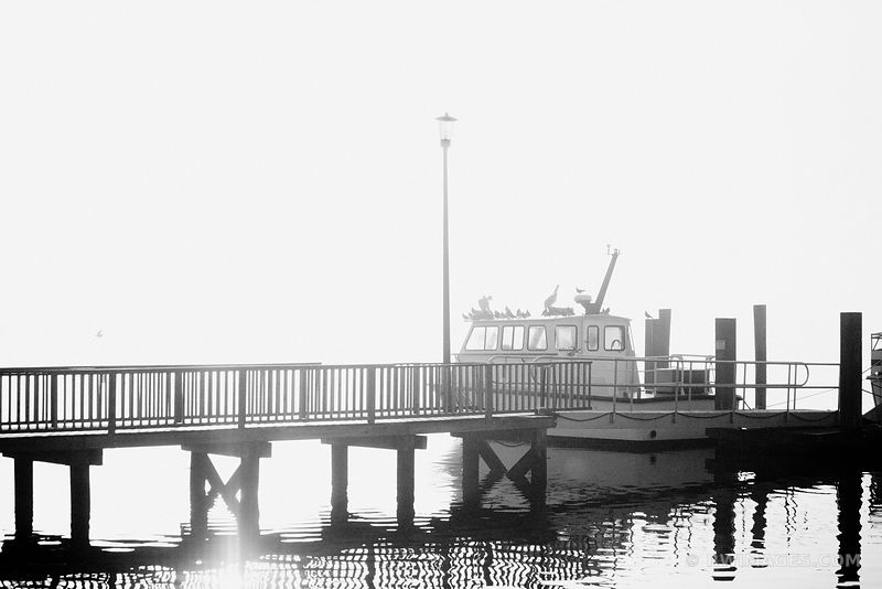 ST. MARYS WATERFRONT ST. MARY'S GEORGIA BLACK AND WHITE