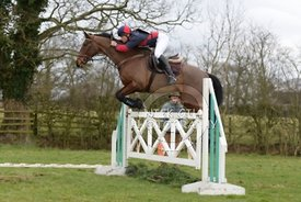 bedale_hunt_ride_8_3_15_0042