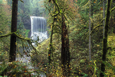 The Silver Creek Canyon and Middle North Falls, Silver Falls State Park, Oregon.