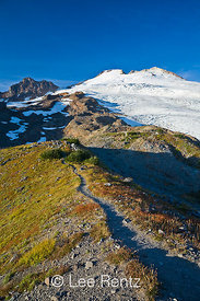 Trail following the Railroad Grade Moraine along Easton Glacier on the slopes of Mt. Baker, Mt. Baker–Snoqualmie National For...