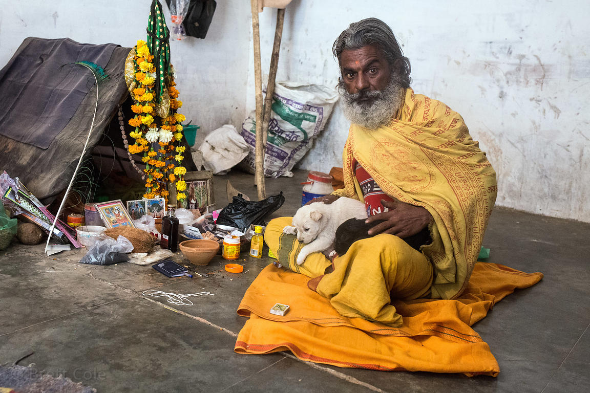 Street dog puppies being cared for by a baba at a crematorium in Pushkar, Rajasthan, India