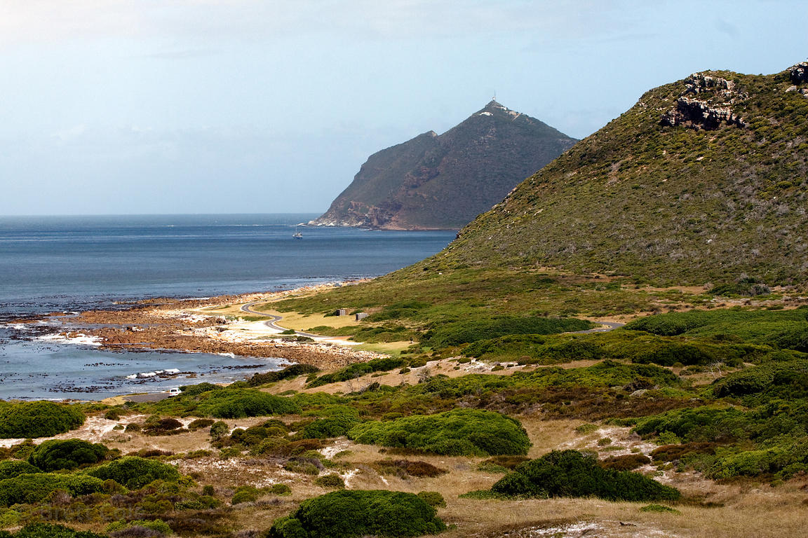 Buffels Bay, Cape Peninsula, South Africa - Chacma baboon habitat