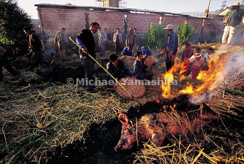 Preparation of a wedding banquet in the village of Shazun, Yunnan. The pig is placed on the fire to burn off the bristles, th...