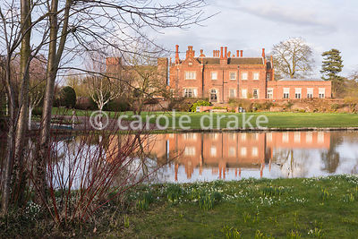 Small lake in the grounds of Hodsock Priory, Blyth, Notts surrounded by grass dotted with snowdrops and early daffodils